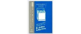 Traveler's Company (Midori) B-Sides & Rarities Notebook Refill, Passport Size, Washable Paper