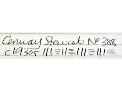CS950 Conway Stewart No. 388.  (Extra Fine)